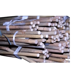 BAMBOO CANES 48